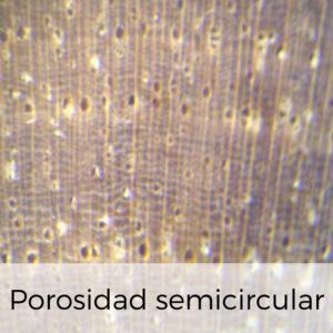 porosidad semicircular