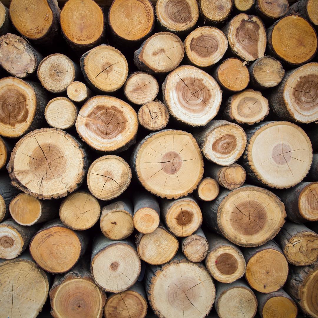 testa de la madera